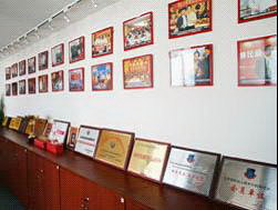 和中宽敞的员工办公区            和中移民中心形象墙图片